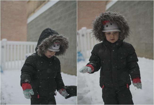 snowy harlow