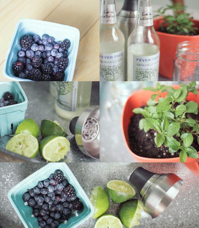 Berry-Mocktail-Mule-Ingredients1