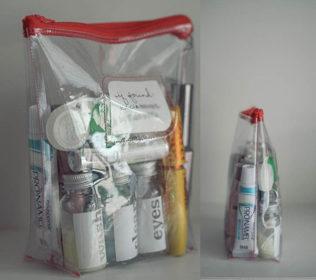 reusable carryon liquid bag